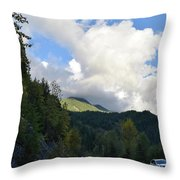 Downhill Road Throw Pillow