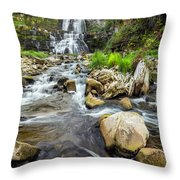 Downstream From Chittenango Falls Throw Pillow