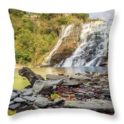 Downstream From Ithaca Falls Throw Pillow