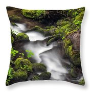 Downstream From The Waterfalls Throw Pillow
