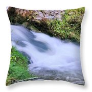Downstream Throw Pillow