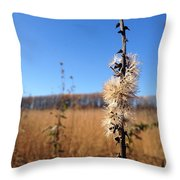 Downtown Meadow Architecture Throw Pillow