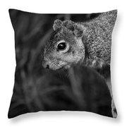 Downward Facing Squirrel Throw Pillow