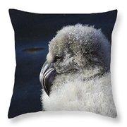 Downy - Baby Flamingo Throw Pillow