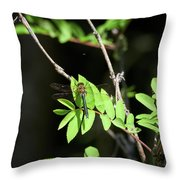 Downy Emerald Throw Pillow