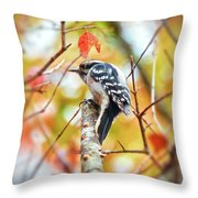 Downy Woodpecker In Autumn Forest Throw Pillow