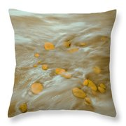 Dp Stone Impressions 15 Throw Pillow