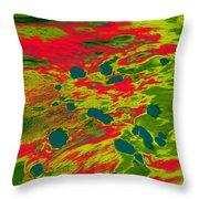 Dp Stone Impressions 22 Throw Pillow