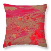 Dp Stone Impressions 26 Throw Pillow