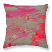 Dp Stone Impressions 6 Throw Pillow