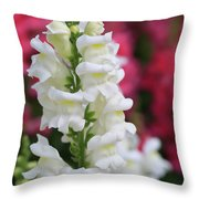 Dragon Flowers Throw Pillow by Tracy Hall