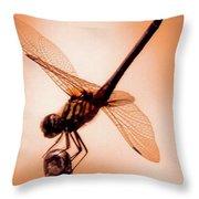 Dragon Fly Throw Pillow