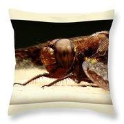 Dragon Fly Head Throw Pillow
