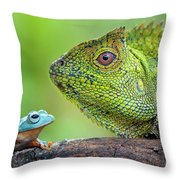 Dragon Forest And Frog Throw Pillow