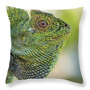 Dragon Forest Throw Pillow