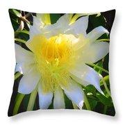 Dragon Fruit Flowering Throw Pillow