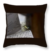 Dragon Times Throw Pillow
