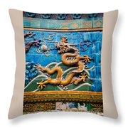 Dragon Wall Throw Pillow