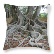 Dragonfeet Throw Pillow