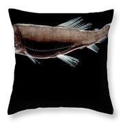 Dragonfish Throw Pillow