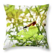 Dragonfly 02 Throw Pillow