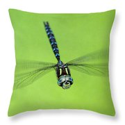 Dragonfly #1 Throw Pillow