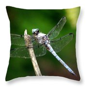 Dragonfly 12 Throw Pillow