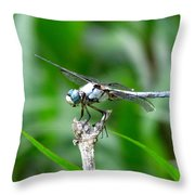 Dragonfly 15 Throw Pillow