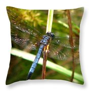 Dragonfly 6 Throw Pillow