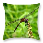 Dragonfly 7 Throw Pillow
