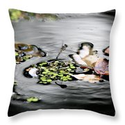 Dragonfly Above Leaves Throw Pillow