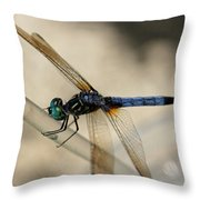Dragonfly Abstract Throw Pillow