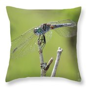 Dragonfly Against Green Backdrop Throw Pillow