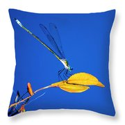 Dragonfly And Leaf Throw Pillow