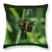 Dragonfly At Rest Throw Pillow