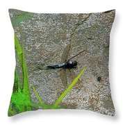 Dragonfly A Throw Pillow