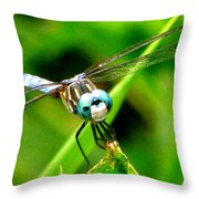 Dragonfly Close Up 2 Throw Pillow