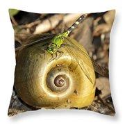 Dragonfly Dream Throw Pillow