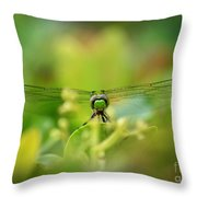 Dragonfly Dream In Green Throw Pillow
