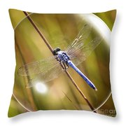 Dragonfly In A Bubble Throw Pillow
