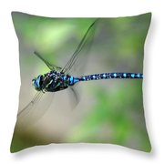 Dragonfly In Flight 2 Throw Pillow