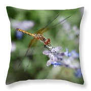 Dragonfly In The Lavender Garden Throw Pillow