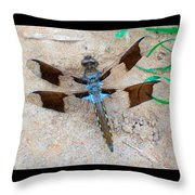 Dragonfly In The Sand Throw Pillow