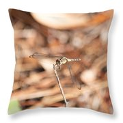 Dragonfly Karaoke Throw Pillow