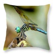 Dragonfly Landing Throw Pillow