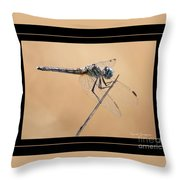 Dragonfly Needlepoint With Border Throw Pillow