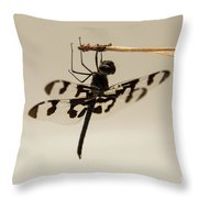 Dragonfly On A Pine Needle Throw Pillow