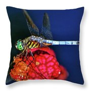 Dragonfly On A Pitcher Plant 009 Throw Pillow