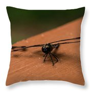 Dragonfly On A Porch Railing Throw Pillow