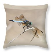 Dragonfly On Bent Reed Throw Pillow